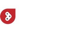 LITE-wire Automotive Systems logo